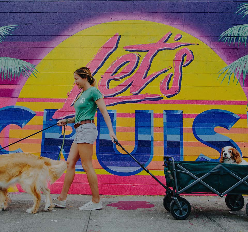 image of girl walking dogs for dogwalker etc.